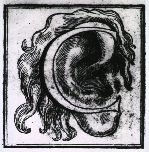 <p>An initial letter &quot;C&quot; around an ear.</p>