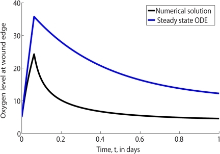 Comparison of the full numerical solution (shown in black) to Eqs (2) and steady state analytic oxygen concentration (shown in blue) at the edge of the wound, .Parameter values: as per Table 1 except .