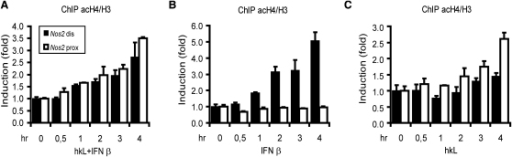 Histone 4 Acetylation at the Nos2 PromoterBone marrow-derived macrophages were treated with hkL and IFN-β (A), IFN-β alone (B), or hkL alone (C) as indicated. ChIP was performed with antibodies to acetyl-histone 4 (acH4) and with antibodies to histone 3 (H3). The presence of distal (black) or proximal (white) Nos2 promoter fragments was determined by q-PCR. Data are expressed as increase of acH4 signals normalized to H3 signals to correct for histone eviction. The histograms thus denote the ratio of acetyl-histone 4 binding as a function of total histone 3 (acH4/H3). Error bars represent standard deviations from triplicate samples. All experiments were repeated at least five times.