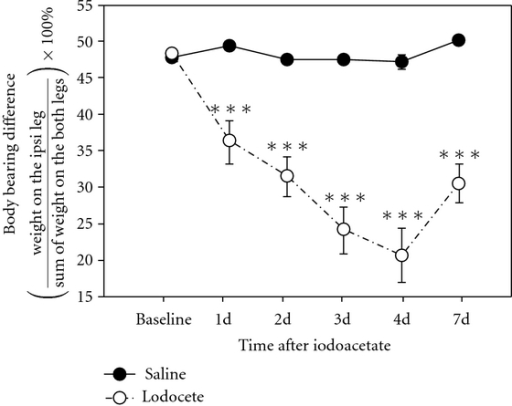 Effect of a unilateral intra-articular injection of monosodium iodoacetate (3 mg/50 μL/rat) on the weight-bearing ability of hind legs (n = 8). Note that iodoacetate-injected rats bore significantly less weight on the ipsilateral hind limb than did saline-injected rats. Abscissas: the time points from the 1st to the 7th day after iodoacetate; ordinate: body weight difference. ***P < .001 versus saline.