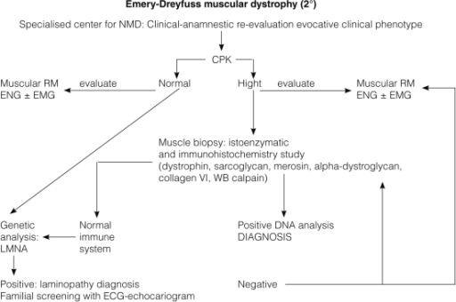 Flow Chart For Diagnosis And Follow Up Of Emery Dreifus Open I
