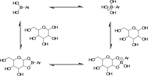 Saccharide-induced hybridization and concomitant polarization changes. When saccharides form cyclic boronates, the Lewis acidity of the boronic acid is enhanced by at least ∼2 pKa units, resulting in a solvolysis reaction at boron. Thus, the sp2 hybridized boronic acid is more readily converted to a charged sp3 hybridized anion upon saccharide binding. In most cases, cyclic boronate ester formation occurs with a sugar furanose (rather than the shown pyranose).