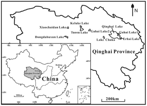 A geographic map showing the locations of the studied lakes on the Qinghai–Tibet Plateau, China.