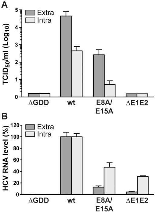 Alanine substitution of the conserved acidic residues on the hydrophilic side of NS4B AH1 affects virus production.(A) Extra- and intracellular infectivity after electroporation of a replication-deficient (ΔGDD), wild-type (wt), E8A/E15A mutant and envelope glycoprotein-deficient (ΔE1E2) full-length Jc1 genomes was determined by 50% tissue culture infective dose (TCID50) measurement at 48 h post-electroporation. (B) Intra- and extracellular HCV RNA levels were determined by RT-PCR 48 h post-electroporation and normalized to GAPDH mRNA level. Results measured for the wt were set to 100%. Note the use of a linear scale as opposed to the logarithmic scale used in panel A.