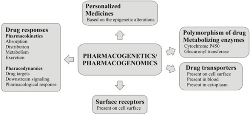 Roles of pharmacogenomics and pharmacogenetics in disease treatment and personalized medicine