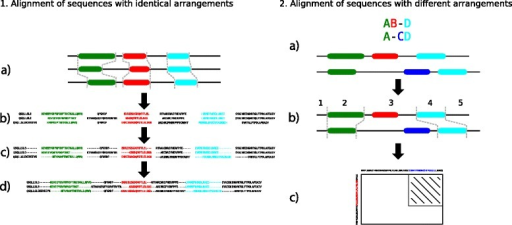 Workflow of the MDA2MSA algorithm. Step 1: Sequences with identical domain arrangements (a) are split according to domain boundaries (b). Then each part is separately aligned (c) and finally all parts are merged back together (d) into a single alignment. Step 2: The MDA (a) is used as a guide. The sequences are split into parts according to the MDA (b). Cuts are performed at the borders of aligned domains resulting in 5 parts. Each pair of sequence segments can now be aligned separately. In case unaligned domains occur in the MDA (part 3), the dynamic programming algorithm is changed such that it maintains the order of domains (c). The striped area represents the area that is not calculated because the MDA forbids the alignment of the two domains.