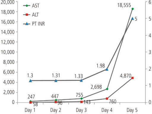 Time course of serum liver enzyme (AST, ALT), and prothrombin time (INR) level. AST, aspartate aminotransferase; ALT, alanine aminotransferase; INR, international normalized ratio.