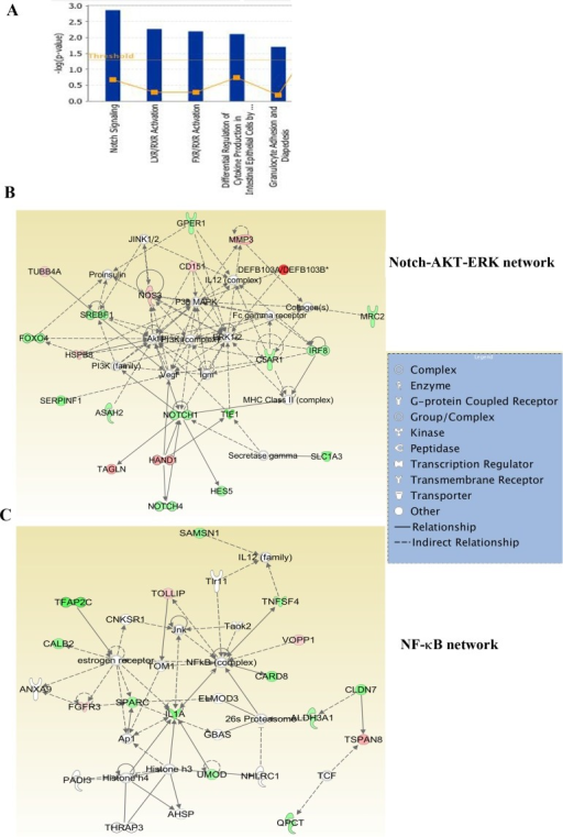 Ingenuity pathway analysis of genes differentially expressed in ADMD-231 cellsA) Notch, FXR/RXR and LXR/RXR networks involved in steroidogenesis similar to adrenal gland are the major pathways in ADMD-231 cells. B) ADMD-231 cells show activation of Notch-ERK-AKT network. C) NF-κB signaling network is active in ADMD-231 cells.