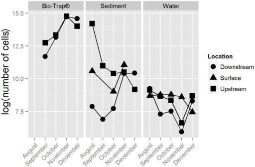 Bio-Trap®, sediment, and water biomass estimates from qPCR results, displayed as log (number of cells) over time for each type of sample at the surface, upstream, and downstream locations.