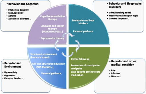 Proposal of a multimodal management of the behavioral disorders in SMS. Treatment of SMS is complex and includes: geneticists, neuropediatricians/neurologists, somnologists, developmental and behavioral pediatricians, psychiatrists, speech and language therapists, neuropsychologists, psychomotor therapists