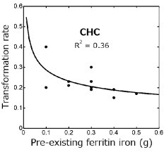 The power regression curve shows a minimal inverse correlation between transformation rates and pre-existing ferritin iron in 11 patients with chronic hepatitis C (CHC). The transformation rate is proportional to the –0.31th power of ferritin iron.