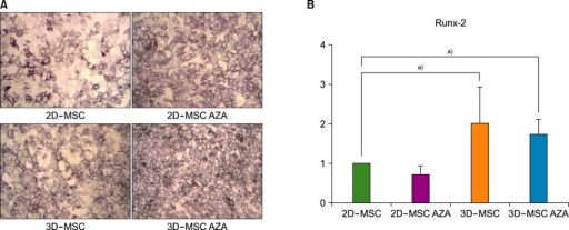 MSC osteogenesis. (A) ALP staining was performed after the osteogenic differentiation of MSCs treated with or without AZA. (B) The transcript levels of Runx-2 were analyzed in the various MSC populations after inducing osteogenesis with osteogenic medium for 72 h (N=4, a)P <0.05).