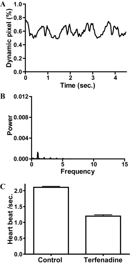 A typical example of the signal of dynamic pixels (A) and its corresponding power spectrum (B) obtained from the caudal circulation of terfenadine-treated embryo at 52 hpf. (C) The heart beat frequency of control and terfenadine-treated embryos with bradycardia analyzed by power spectrum. A significant decrease in heart beat frequency was found in terfenadine-treated embryos (p < 0.01).