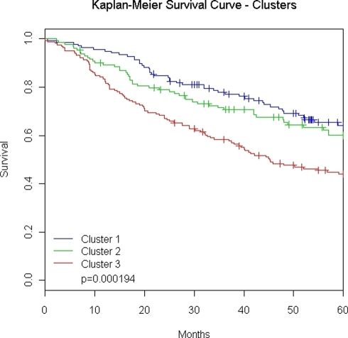 Clusters show survival differences.Kaplan-Meier survival curves for 432 lung adenocarcinomas (AD) showing a significant difference between clusters (log-rank test: p = 0.000194). Abbreviations: Cluster 1, left most cluster in Figure 2; Cluster 2, middle cluster is Figure 2; Cluster 3, right most cluster in Figure 2.