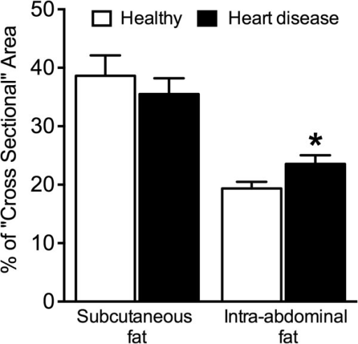The percentage of cross-sectional areas of subcutaneous and intra-abdominal fat between healthy dogs and dogs with heart disease. *P < 0.05.