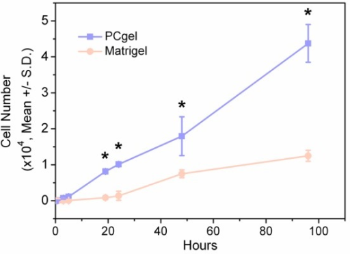 Time courseof therapeutic T lymphocyte invasion through the PCgeland Matrigel. The statistical differences in therapeutic T lymphocyteinvasion through the PCgel vs through Matrigel are labeled with asterisks(p < 0.05).