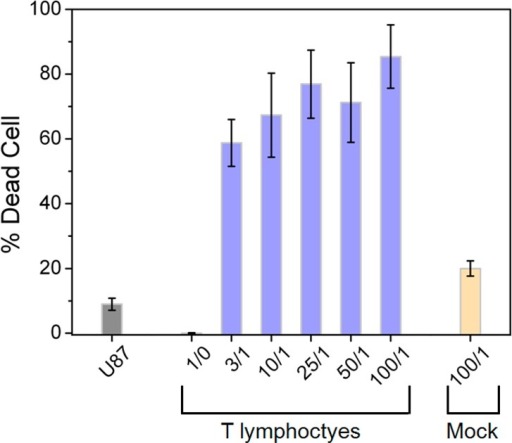 Percentage of U-87 MG tumor cell death afterT lymphocyte treatmentat various effector/target (T lymphocyte/U87) ratios (1/0, 3/1 to100/1). Mock was applied as a negative control.