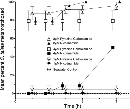 The effects of pyrazinecarboxamide and nicotinamide on metamorphosis of C. teleta when tested equal concentrations.Each treatment consisted of 3 replicates with 8 larvae per replicate. Artificial seawater (Instant Ocean) acted as a negative control. Error bars represent +/−1 s.e.m.