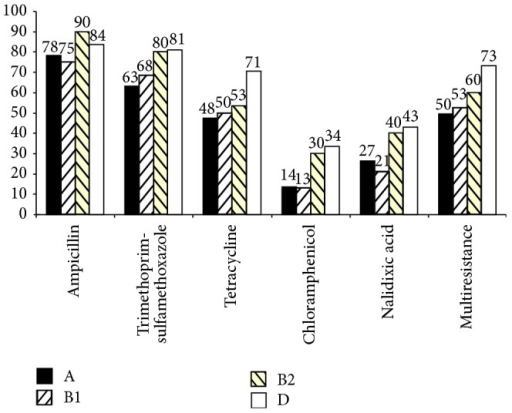 Percentages of multiresistance (resistance to 3 or more different antibiotics families) and antibiotic resistance among the four phylogenetic groups A (n = 147), B1 (n = 76), B2 (n = 30), and D (n = 116).