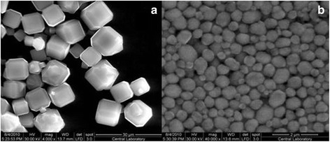 Scanning electron microscopy images of synthesized LTA-9 (a) and BEA-40 (b) zeolites.
