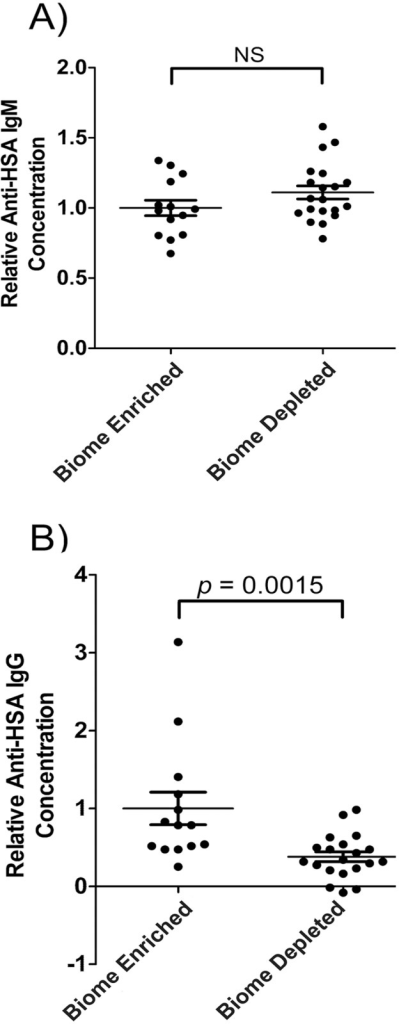 Natural anti-human serum albumin antibody levels in the serum of biome depleted (n = 20) and biome enriched (n = 15) rats.The relative concentration of antibody was determined by ELISA as described in the Methods. Relative levels of (A) IgM and (B) IgG are shown. Binding to human serum albumin (HSA) was used as a measure of reactivity toward a xenogeneic antigen for which the animals lacked previous exposure. The means, standard errors, and the p-values associated with comparing data from biome depleted and biome enriched animals using a t-test are shown. (NS = not significant)