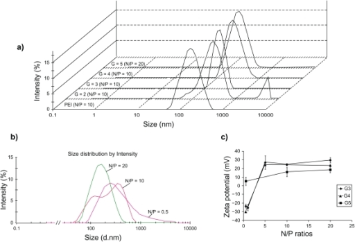 Size distribution by intensity of PAMAM/ANS nanoparticles (a and b) and Zeta potential graphs of different N/P ratios of PAMAM G3 (), G4 (), and G5 (▪) in 5% dextrose (c). Fixed concentrations of 500 nM of ANS in 5% dextrose were mixed with different generations of PAMAM at N/P ratio of 10 a). Part a) shows all size distributions at the same intensity scale in one graph. A peak of larger aggregates of G2/ANS nanoparticles can be observed in part a). Nanoparticles of various N/P ratios of PAMAM G5 which were formulated in 5% dextrose are shown in part b). In part c), the represented data are means of two (without error bar) or three (mean ± SD) measurements.Abbreviations: PAMAM, poly(amidoamine) dendrimer; SD, standard deviation; ANS, antisense oligonucleotide.