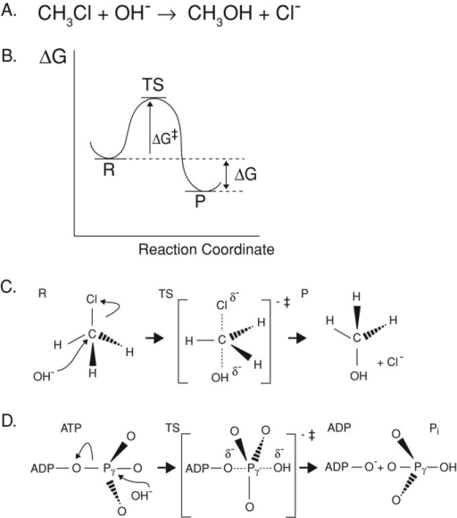 Reaction Coordinate Diagram For Chemical Reactions A Open I