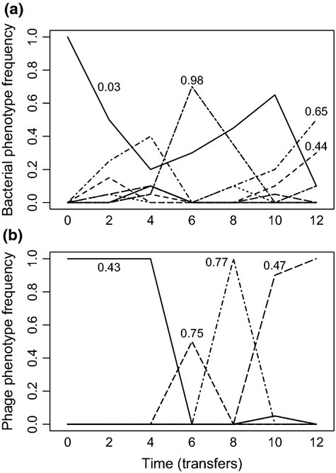 Temporal dynamics of different bacteria (a) and phage (b) phenotypes (based on cluster analyses with 80% similarity) of a single community evolved under low nutrient conditions. Numbers associated with the dominant phenotypes indicate their resistance/infectivity ranges (i.e. proportion of clonal isolates bacteria could resist/phage could infect).