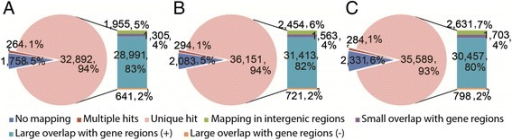 "Mapping ofde novoassembled transcripts of the three Chinese wildVitis, BH (A), HN (B), and S (C), to the reference PN40024 genome. No mapping: Contigs not mapped; Multiple hits: Contigs mapped to multiple genomic locations; Unique hit: Contigs mapped to unique genomic locations; Mapping in intergenic regions: Contigs mapped to intergenic regions; Small overlap with gene regions: Contigs mapped to gene regions with low overlapping (<90% of contig length); Large overlap with gene regions (+): Contigs mapped to gene regions in sense directions with high overlapping (≥90% of contig length) ; Large overlap with gene regions (−): Contigs mapped to gene regions in antisense directions with high overlapping (≥90% of contig length). BH, V. pseudoreticulata accession ""Baihe-13-1""; HN, V. pseudoreticulata accession ""Hunan-1""; S, V. quinquangularis accession ""Shang-24""."