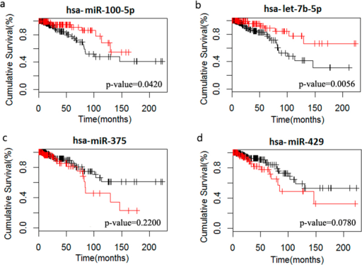 Survival analysis of miRNAs regulating the dosage sensitivity of amplified/deleted genes in BRCA.a and b indicate that samples with high expression of hsa-miR-100-5p and hsa-let-7b-5p that regulating the dosage sensitivities of amplified genes had a longer survival time. c and d indicate that samples with low expression of hsa-miR-375 and hsa-miR-429 regulating the dosage sensitivities of deleted genes had a longer survival time.