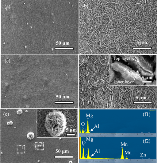 Representative FE-SEM images of the samples treated hydrothermally at 120 °C for (a,b) 8 h and (c,d) 12 h at a pH of 12 and (e) 120 °C for 12 h in DI Water; (f) EDS spectrum acquired from different areas on sample (e): (f1) Flat and (f2) Flower-like zones.