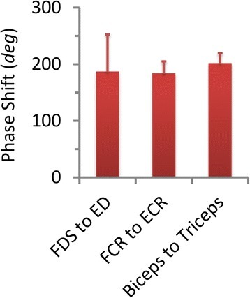 The phase shift between 3 pairs of antagonistic muscles averaged from all PD subjects. The error bars indicate the standard deviation of phase shift calculated from all subjects