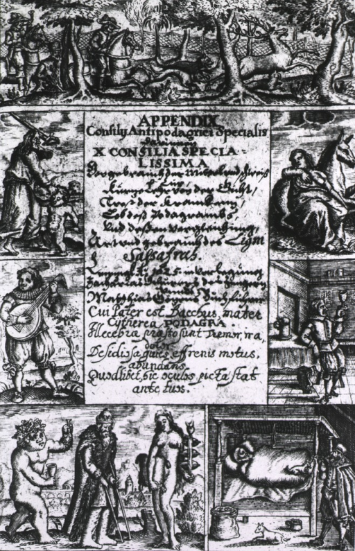 <p>Hunting, wine, women, and song, and abuse of children are depicted in vignettes across the top and down the sides of the page; they lead to the bottom vignettes depicting a gouty philosopher accosted by Bacchus and Venus, and a bedridden patient.</p>