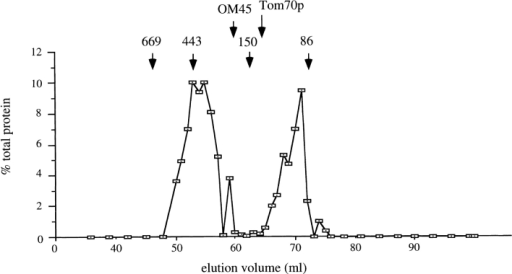 Mgm1p participates in  a high molecular mass complex.  Purified mitochondria were solubilized in 1% Triton X-100 and  the mixture was centrifuged to  remove insoluble debris. The supernatant was loaded onto a  Sephacryl-300 column and subjected to gel filtration chromatography. Proteins in collected  fractions were precipitated with  TCA and analyzed by SDS-PAGE and immunoblotting.  The percentage of total Mgm1p  recovered was plotted for each  fraction. Arrows indicate peak  fractions for marker proteins:  669 kD, thyroglobulin; 443 kD,  apoferritin; 150 kD, carbonic anhydrase; and 86 kD, bovine serum albumin. Also shown are  elution peak fractions for two other outer membrane proteins, OM45 and Tom70p. The latter protein was reported to be in a complex  with Tom37p (Mas37p) with an apparent molecular mass of ∼110 kD (Gratzer et al., 1995).