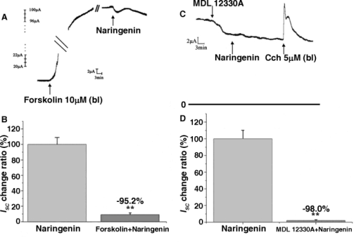 Pretreatment with forskolin reduced NAR–induced ISC on rat colonic mucosa by 95.2% (A and B) [**P<0.001 vs. control].Pretreatment with MDL-12330A reduced NAR–induced Isc by 98.0% (C and D) [**P<0.001 vs. control]. Each column represents the mean±SE (n = 5).