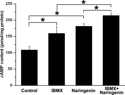 Effect of NAR on intracellular cAMP level of rat colonic mucosa.Comparison of the cAMP generation induced by IBMX (100 µM, both sides), NAR (NAR; 100 µM, mucosal), forskolin (Fors; 0.3 µM, mucosal), each column represents the mean±SE [*P<0.05 vs. control].