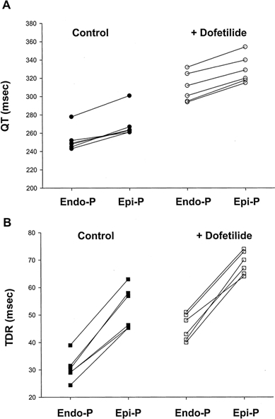 Effects of endocardial pacing (Endo-P) and epicardial pacing (Epi-P) on: (A) QT interval duration and (B) TDR in arterially perfused rabbit left ventricular preparations with and without the administration of dofetilide. Note that epicardial Epi-P led to a more pronounced prolongation in TDR than the QT interval duration. Reproduced with permission from Lippincott Williams & Wilkins [7].