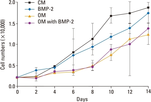 Proliferation of BMSCs in osteogenic medium with or without BMP-2. Proliferation profiles of BMSCs cultured for 14 d in the presence of OM with or without BMP-2 were obtained. Although the cell numbers in these four groups were not significantly different (p > 0.05), cell growth was slightly inhibited in the presence of OM with or without BMP-2. CM, control medium; OM, osteogenic medium; BMSCs, bone marrow stromal cells; BMP-2, bone morphogenetic protein-2.