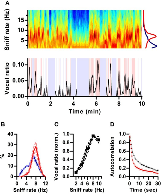 sex differences in ultrasonic vocalization in Androgen modulation of foxp1 and foxp2 in the developing rat brain: impact on sex mccarthy mm foxp2 mediates sex differences in ultrasonic vocalization by.
