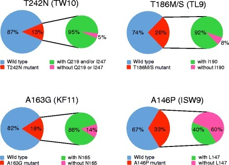 The prevalence of the T cell escape mutations in T cell epitopes with or without compensatory amino acids. One sequence from each HIV-1 infected individual in the Los Alamos HIV-1 Sequence Database was analyzed for four well-studied T cell epitopes (TW10, TL9, KR11 and ISW9). Over 4000 sequences were analyzed for each epitope. The frequency of the sequences with the CTL escape mutations and the frequency of the CTL mutant sequences with and without the compensatory amino acids were determined for each CTL epitope.