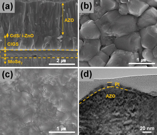 Cross-sectional scanning electron microscope (SEM) image of bottom CIGS cell (AZO/i-ZnO/CdS/CIGS/Mo) (a), top-view SEM images of the CIGS film only (b) and AZO/i-ZnO/CdS/CIGS film (c), and TEM image of Pt nanoparticles deposited on AZO/i-ZnO/CdS/CIGS film by APD.