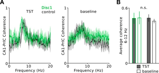 Low-gamma defect in the PrlC of Disc1 mice does not depend on the behavioral state during TST.(A) Average power spectral density in the PrlC of Disc1 (green) and control mice (black) during freezing (left) and movement (right). (B) Summary plots of mean low-gamma power revelas significantly impaired power during both behavioral states. (n = 8 Disc1, 6 control mice). Data are mean ± SEM.DOI:http://dx.doi.org/10.7554/eLife.04979.011