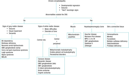 An approach to inherited metabolic diseases with chronic encephalopathy. CNS, central nervous system; MELAS, mitochondrial encephalomyopathy, lactic acidosis, and stroke-like episodes syndrome; MPS, mucopolysaccharidosis. Adapted from Clarke. A clinical guide to inherited metabolic diseases. 2006:337).