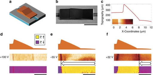 The ferroelectric domain-wall diode.Schematic illustration of a KTP lamella with a sawtooth cross-sectional morphology, straddling an interelectrode gap, in a coplanar capacitor device (a). The real device was imaged (b) using SEM (52° tilt); in c, a line profile of the lamellar surface topography along with a plan-view AFM image (inset), with the location at which the line profile was taken marked in red, are presented. The domain-wall injection and motion associated with switching this device are presented in d–f. In each case, the cross-sectional morphology (top) is aligned with the plan-view PFM amplitude (middle) and phase (bottom). The panels in d illustrate the initial fully poled monodomain state after the application of +100 V bias pulse. In e, a partially switched state (after the application of −55 V) is given: a new domain wall has been injected and progressed from right to left up the ramp and over the sawtooth edge. In f, the state after a further bias pulse (+32 V) was applied in the original poling sense is presented: a domain wall of the opposite polarity has been injected into the device and moved to the base of the ramp. Little movement in the original wall injected in e has occurred, due to the potential barrier associated with the steep ledge of the sawtooth structure. The scale bar in b is 5μm long, while those in d–f are 3μm long.