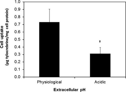 Effect of extracellular pH on cellular accumulation oftylocrebrine.Tylocrebrine (as free drug) was incubated with A431 cells at an extracellularpH of 7.4 (physiological) or ∼6.5 (acidic). Cellular accumulationwas measured by determining intracellular tylocrebrine concentrationusing HPLC. Tylocrebrine concentration was normalized to cell proteincontent. Data represented as mean ± SD, n =6, † indicates p < 0.005.