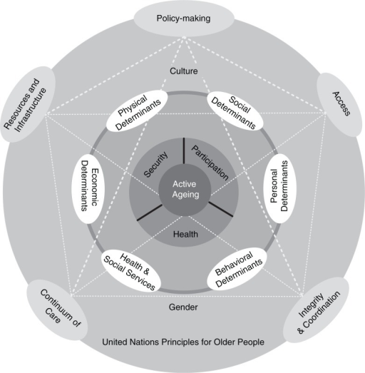 Conceptual framework to achieve active aging goals in developing countries.