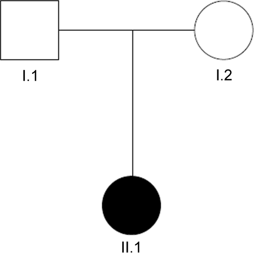 Pedigree of family B. The pedigree shows a classical trio of healthy parents (I.1 and I.2) and an affected child (II.1).