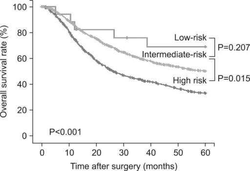 Overall survival curves for low-, intermediate- and high-risk groups of serosal invasion in patients with advanced gastric cancer.