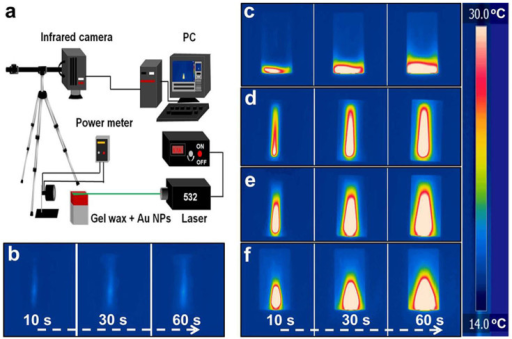 Schematic of laser illumination experimental setup and time-sequential IR images.(a) A 532-nm green laser with a power density of 36.3 W/cm2 was used to excite the plasmonic Au NPs and a thermal IR camera was used to capture the temperate change operating at a video mode. The schematic was drawn by Z. W. with Microsoft PowerPoint. Time-sequential IR images obtained from FLIR R&D software: (b) neat gel wax; (c) gel wax-Al foil; (d) gel wax-Au NP-1; (e) gel wax-Au NP-2; (f) gel wax-Au NP-3 after laser illumination of 10, 30 and 60 s. The scale bar is 1 cm.
