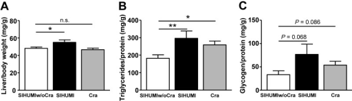 Liver parameters of mice harboring a simplified human intestinal microbiota (SIHUMI), SIHUMI without C. ramosum (SIHUMIw/oCra), or C. ramosum only (Cra). All mice were fed a high-fat diet for 4 weeks. (A) Relative liver weight. (B) Liver triacylglycerol content. (C) Liver glycogen content. Mean values ± SEM are shown. n = 8 to 9 mice per group, except for SIHUMI liver weight, for which n = 5. *, P < 0.05, and **, P < 0.01, for obese SIHUMI or Cra mice versus less obese SIHUMIw/oCra mice (reference). n.s., not significant.